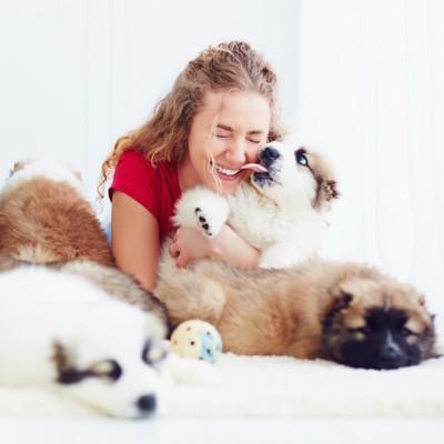女性の顔を舐める子犬