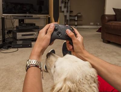 TVゲームをする人と犬