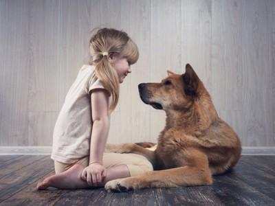 向き合う子どもと犬