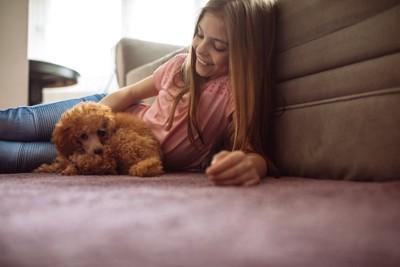 カーペットの上でくつろぐ女の子とトイプードル