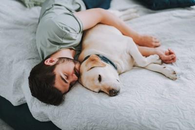 男性と一緒にベッドで寝るレトリバー