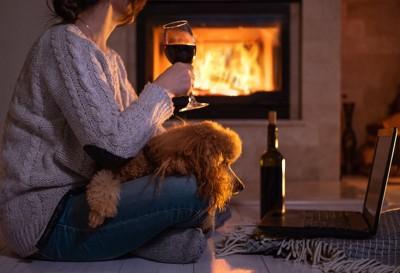 部屋でお酒を飲む女性とくつろぐ犬