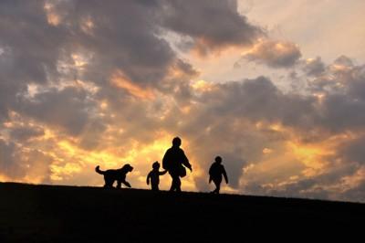 夕日の中で歩く家族と犬のシルエット