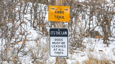犬にはリード着用をと書かれた看板