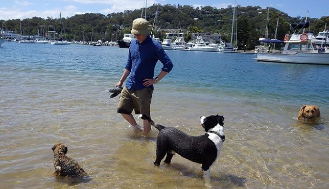海で遊ぶ犬と飼い主