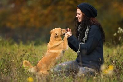 屋外で遊ぶ女性と犬