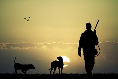 狩猟犬と人間