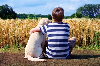 犬と寄り添う男の子の後ろ姿