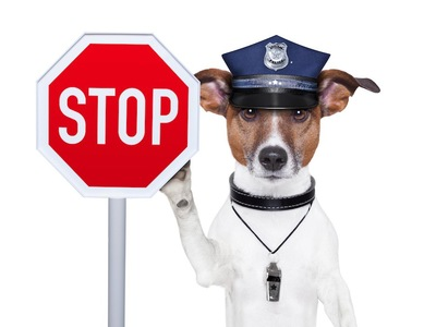 stopの看板を持った犬のおまわりさん