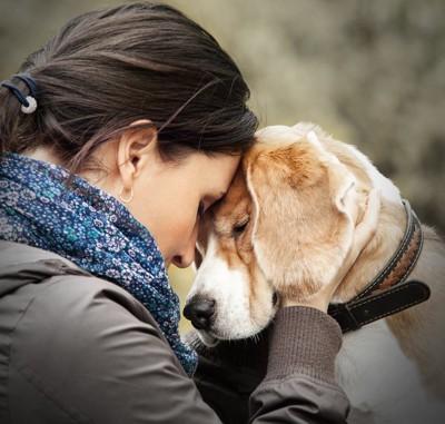 目を閉じて女性とおでこを合わせる犬