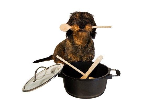 鍋とワイヤーダックス