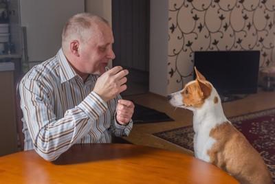 会話をする男性と犬