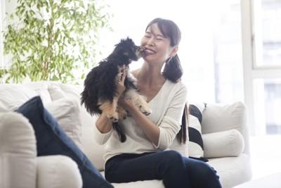 抱き上げられて女性の口元を舐める犬