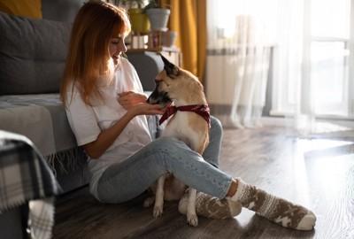 飼い主さんの手からオヤツを食べる犬
