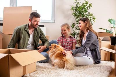 引っ越しの準備をする家族と犬