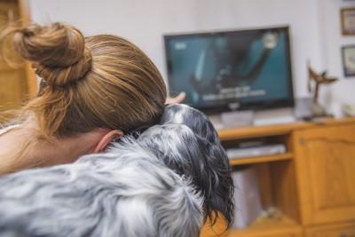 女性と一緒にテレビを見ている犬