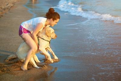 水を嫌がる犬