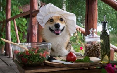 サラダを前にほほえむ犬