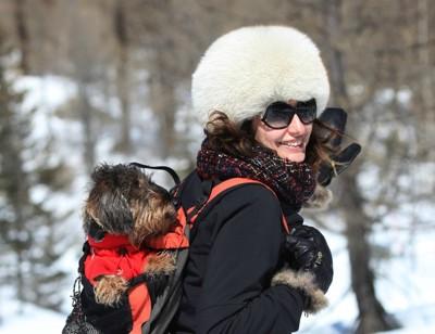 雪山でおんぶされる犬