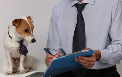 ネクタイを締めた男性と犬