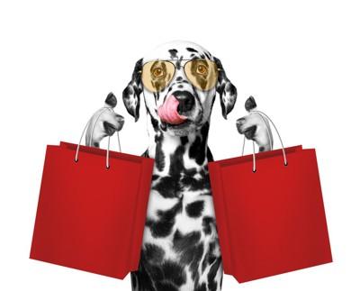 ショッピングバッグを持った犬