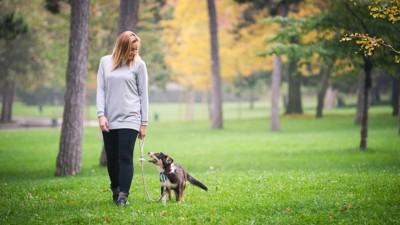公園内での散歩