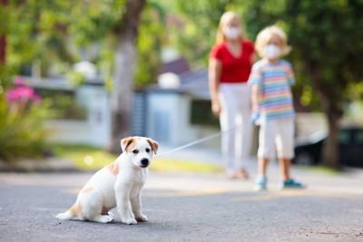 散歩するマスクの親子と犬