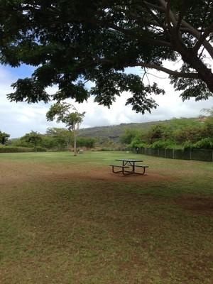 ベンチと公園