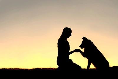 女性と犬のシルエット