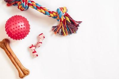 様々な種類の犬用おもちゃ