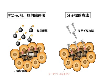 分子標的療法イラスト