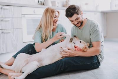 犬とじゃれ合う男性と女性