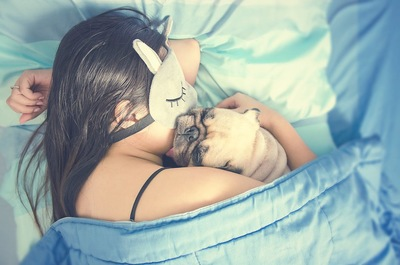 ベッドで女性に抱きしめられて眠るパグ