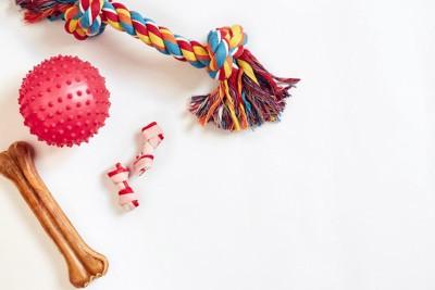 様々な犬のおもちゃ