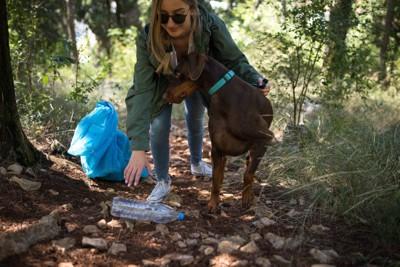 犬と一緒にゴミを拾う女性