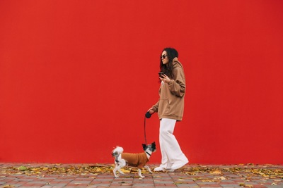 犬の散歩中にスマホを使用する女性