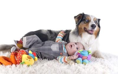 寝転がる赤ちゃんに寄り添う犬
