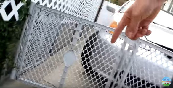 フェンスを指さす