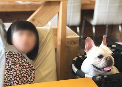 こくぼと姪の写真