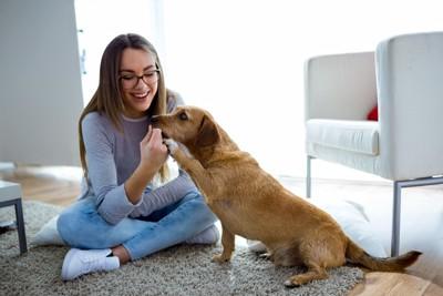 犬と女性 家