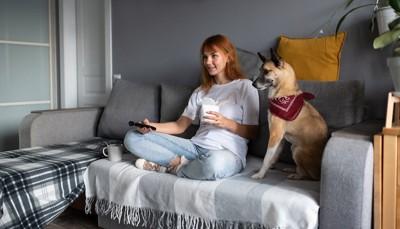 リモコンを持つ女性の隣に座る犬