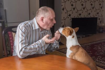 話しかけている男性と話を聞く犬