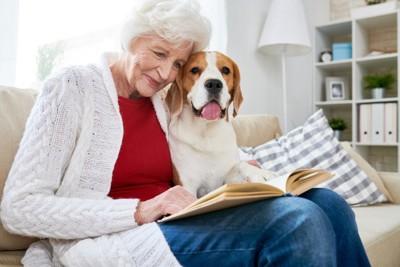 白髪の女性と一緒に本を読むビーグル犬