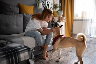 女性を見上げる犬