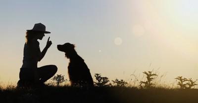 トレーニングする女性と犬のシルエット