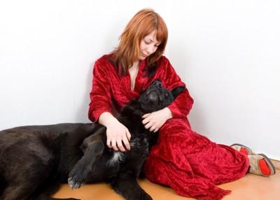 相互依存の飼い主と犬