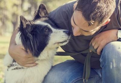 飼い主とスキンシップ中の犬