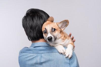 怖がって男性に抱っこされる犬
