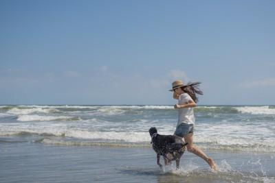 海で走るドーベルマンと女性