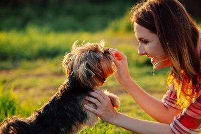 遊んでいる女性と犬